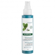 Anti-Pollution Purifying Mist Mint