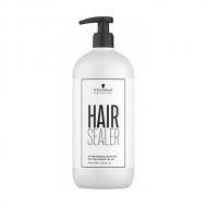 Color Enablers Hair Sealer
