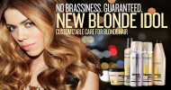 The ultimate Redken blonde must-have!